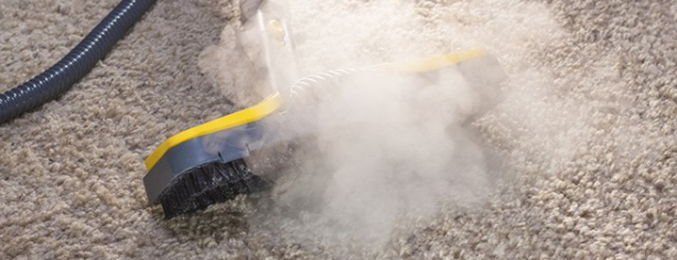 Professional Carpet Cleaner Tampa | Accent American