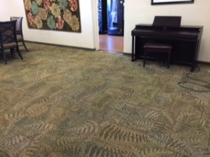 carpet cleaning,carpet cleaner,carpet cleaning machine,professional carpet cleaner, best carpet cleaner, best carpet cleaner near me,best way to clean carpets,clean my carpets,diy carpet cleaning,rug doctor,Bissell,carpet cleaning machine